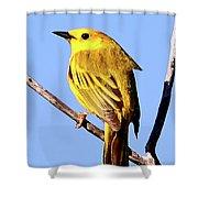 Yellow Warbler #2 Shower Curtain