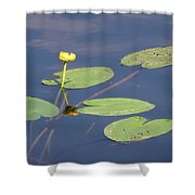 Yellow Water Lily Shower Curtain