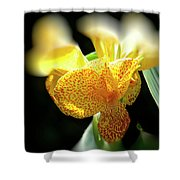 Yellow With Red Spots Shower Curtain