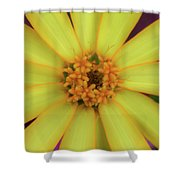 Yellow Zinn Shower Curtain