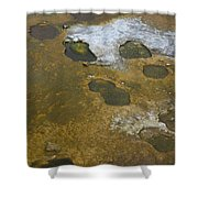 Yellowstone #1 Shower Curtain