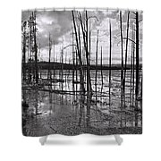 Yellowstone 145 Shower Curtain