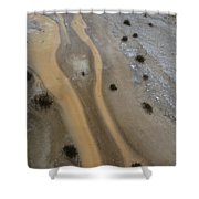 Yellowstone #3 Shower Curtain