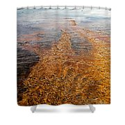 Yellowstone Colors #7 Shower Curtain