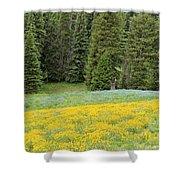 Yellowstone Meadow Shower Curtain
