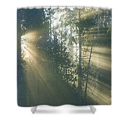 Yellowstone Morning Shower Curtain