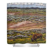 Yellowstone Reflections Shower Curtain by Erin Fickert-Rowland