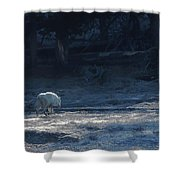 Yellowstone White Lady Unsigned Shower Curtain