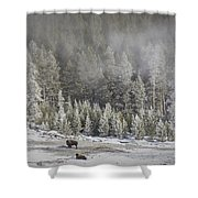 Yellowstone Winter Landscape Shower Curtain