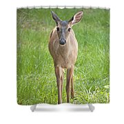 Yes Deer Shower Curtain