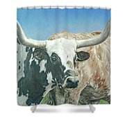 Yes, This Is Texas Shower Curtain