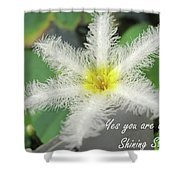 Yes You Are A Pure Shining Star Shower Curtain