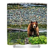Yikes, It's A Grizzly Shower Curtain