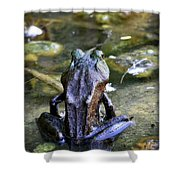 Yoga Frog  Shower Curtain