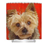 Yorkie 10 Shower Curtain