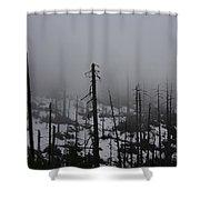 Yosemite 11 Shower Curtain
