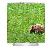Yosemite Bear Shower Curtain