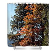 Yosemite Fall Color Shower Curtain