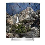 Yosemite Falls Tree Shower Curtain