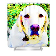 You Are My World - Yellow Lab Art Shower Curtain