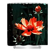 You Are So Beautiful ... Shower Curtain