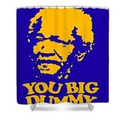 You Big Dummy Shower Curtain