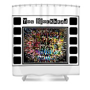 You Blockhead Poster Shower Curtain