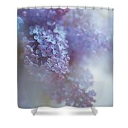 You Came From Another Realm Shower Curtain