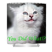 You Did What Greeting Card Shower Curtain