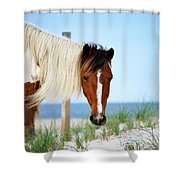 You Looking At Me? Shower Curtain
