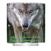 You Whatever Doesn't Kill Me... Shower Curtain