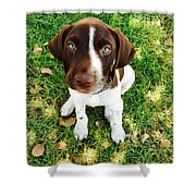 Young Blue Eyes Shower Curtain