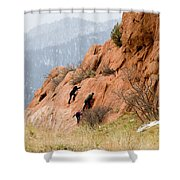 Young Climber In Red Rock Canyon Shower Curtain