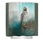 Young Eyes Shower Curtain