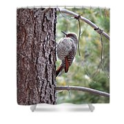 Young Flicker Shower Curtain