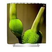 Young Green Shoots Shower Curtain