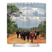 Young Herders, Zambia Shower Curtain