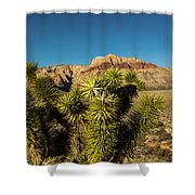 Young Joshua Shower Curtain