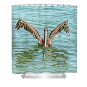 Young Pelican 0087 Shower Curtain