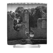 Young Ruins Shower Curtain