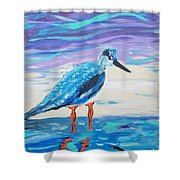 Young Seagull Coastal Abstract Shower Curtain