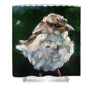 Young Sparrow Shower Curtain