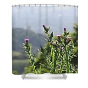 Young Thistles Shower Curtain