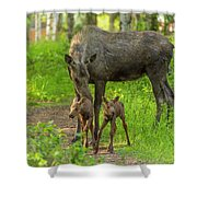Young Twins Shower Curtain