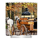 Your Carriage Awaits Shower Curtain