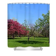 Your Life Is Waiting Shower Curtain