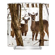 Your Looking At Me Shower Curtain