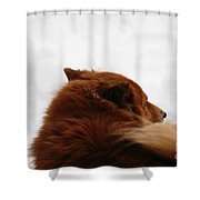 Your Spirit Remains Shower Curtain