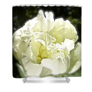 Your World For A Moment Shower Curtain