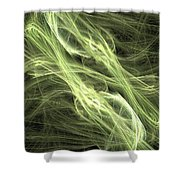 Youth And Beauty Shower Curtain
